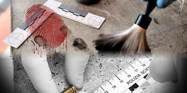 Técnico en CRIMINALÍSTICA , termínalo en 4 Meses en modalidad en ...